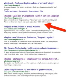 google-vliegles